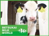株式会社別海ミルクワールド | 日本最大級の生乳生産量を誇る町・別海のメガファームで働く!の画像・写真