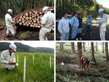 九州林産株式会社 | 【 九電グループ 】★設立から70年目を迎える企業の画像・写真