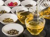 株式会社木の舟|【高級中国茶を取り扱う新しい会社です!】★研修充実!★20代活躍中!の画像・写真